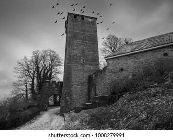 The Schaumburg Castle and birds in sky, Germany .