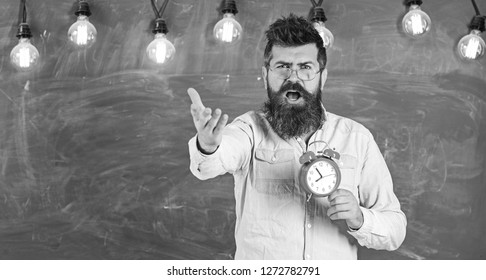 Schedule and regime concept. Bearded hipster holds clock, chalkboard on background, copy space. Man with beard on shouting face on arguing expression. Teacher in eyeglasses holds alarm clock.
