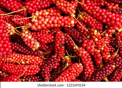 Schisandra chinensis or five flavor berries being sold at Shangri La wet market in Deqen, Yunnan, China.