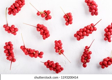 Schisandra chinensis or five-flavor berry. Fresh red ripe berries pattern on white background. Flat lay. Top view. Food background.