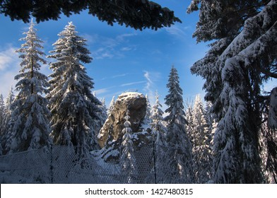 Schneckenstein with Tobasmountain is a mountain of Saxony, southeastern Germany in Vogtland. Hidhest Point 883 m (2,897 ft).