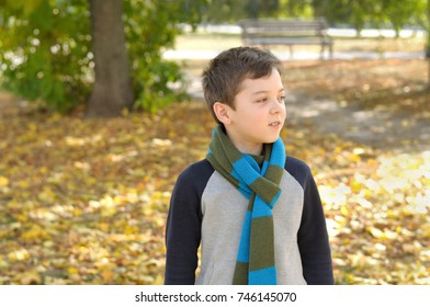 school age boy walks in autumn yellow leaves. He is dressed in a jacket and blue-green scarf tied around his neck