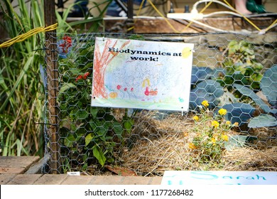 School biodynamic garden