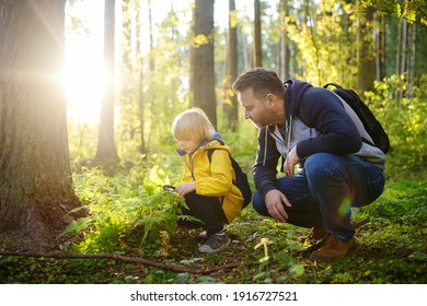 School boy and his father hiking together and exploring nature with magnifying glass. Child with his dad spend quality family time together in the sunny summer forest. Daddy and his little son