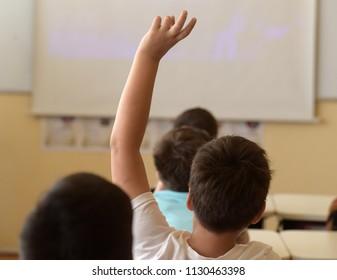 School boy rising hand in class