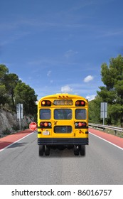 School Bus with Handicap Symbol on Street Sunny Blue Sky Day