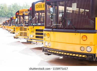 School buses in line on parking lot. Back to school concept or education.