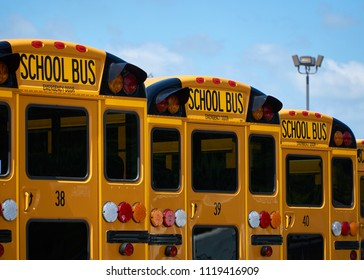 school busses in a row