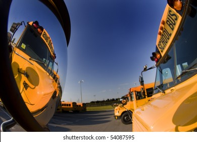 School busses sit in a parking lot