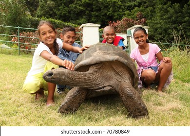 School children with giant tortoise on St Helena. Jonathan is a famous giant tortoise on St Helena Island who is estimated to be two hundred years old