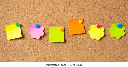 School concept. Six sticky notes in various shapes with pushpins and blank space, isolated on cork background.