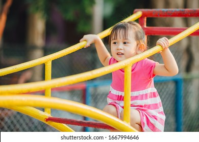 School kids play and learn in the playgound. Physical activity like climbing are good for develop movement and muscle in children and improve brain in multifunctions from playing activities.