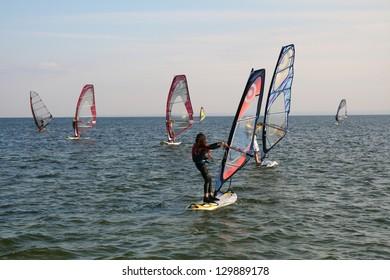 School windsurfing in the bay Halupy Puck, Poland