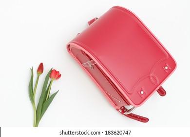 Schoolchild's rucksack and tulip
