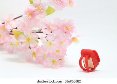 Schoolchild's rucksacks and cherry blossoms on white background. randoseru. Entrance ceremony concept.