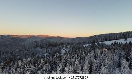 Schwarzwald Wald am Abend im Winter mit Schnee.  - Shutterstock ID 1917572909