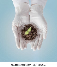 science, biology, ecology, research and people concept - close up of scientist hands holding petri dish with plant and soil sample over blue background