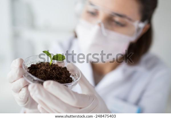 scienza, biologia, ecologia, ricerca e concetto di persone - primo piano di una giovane scienziata che indossa una maschera protettiva che tiene Petri piatto con campione di piante e terreno in laboratorio biologico
