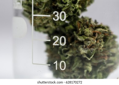 Science, Safety, Research, Technology and Cannabis -  The Increasingly Legal, Medical and Recreational Use of Marijuana