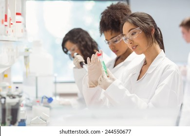 Science students working in the laboratory at the university