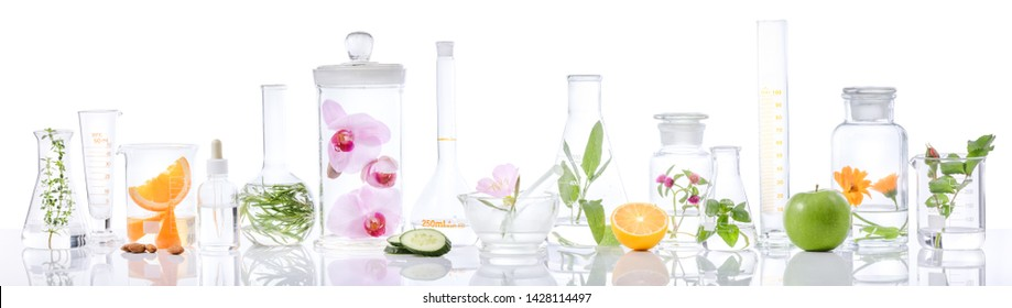 Scientific Experiment.Herbs,flower and fruit  in test tubes