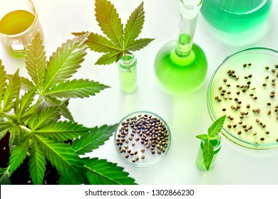 Scientific research of medical cannabis for use in medicine, bio