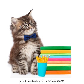 Scientist cat sitting with a stack of books. isolated on white background