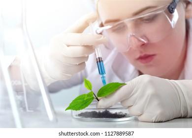 Scientist do biochemistry analysis