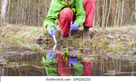 Scientist ecologist in the forest taking sample of water for chemical analysis.