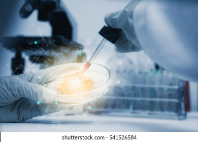 Scientist with equipment and science experiments ,laboratory glassware containing chemical liquid for design or decorate your content,copy space,mock up.