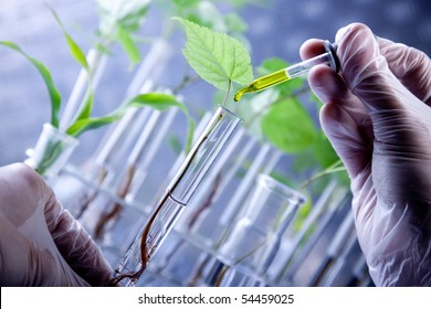 Scientist holding samples of new super grow plants