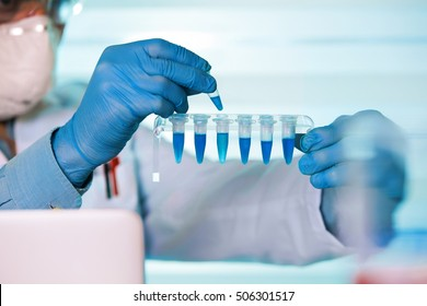 scientist holding tube and working with laptop at genetic lab / hands of biomedical engineering genetic working in laboratory