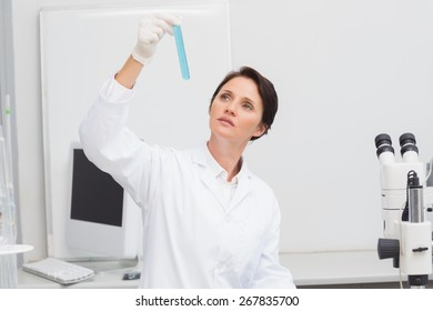 Scientist looking attentively at test tube in laboratory
