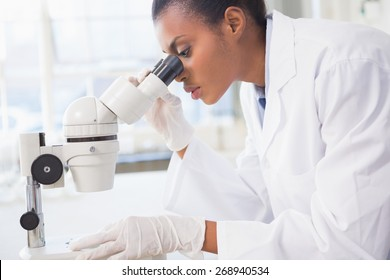 Scientist looking in microscope in laboratory