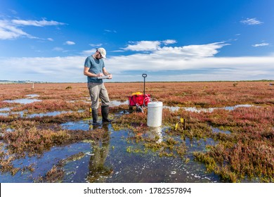 Scientist measuring greenhouse gas emissions at a wetland using a portable gas analyser  to understand the role of tidal marshs in carbon sequestration.