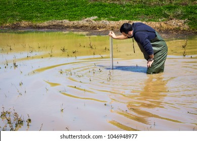 Scientist measuring  turbidity and water quality parameters in a wetland