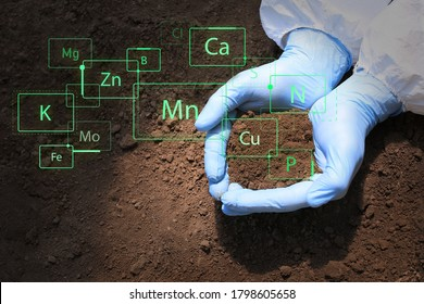 Scientist with sample of soil outdoors, closeup