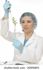 Scientist using a manual pipette in a botanical experiment