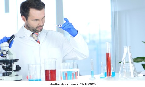 Scientist Using Microscope and Examining Reaction in Watch Glass in Laboratory