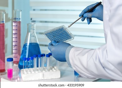 scientist working in a pharmaceutical lab / biomedical engineer working with microplate in laboratory