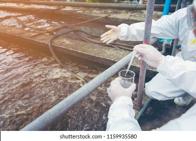 Scientists are examining the quality of waste water treatment systems to control chemicals before releasing water to the environment.