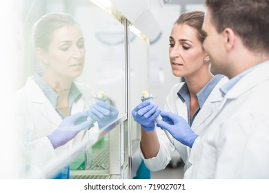 Scientists in laboratory preparing samples under splashback for experiment or test
