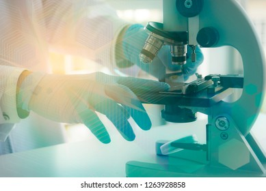 Scientists researching in scientific laboratory. Scientist and  looking at the cell colony grown in the petri dish in the life science research laboratory.
