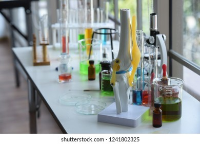 Scientists are working in science labs. Laboratory and Laboratory Equipment.Close-up of a beautiful scientist. microbiological analysis, medicine.