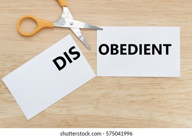 Scissor cut the paper to change the word DISOBEDIENT to OBEDIENT. Conceptual.