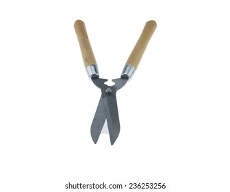 Scissors for cutting grass, beautiful, strong, durable, easy to use, cut decoration field. Fence is a fence and grass or tea.