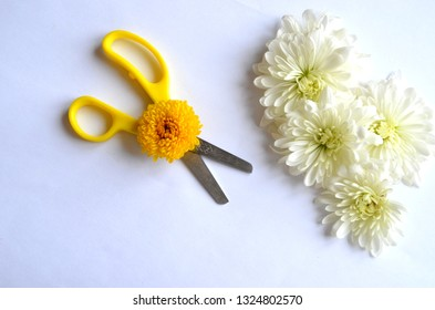 Scissors on light floral background,photo