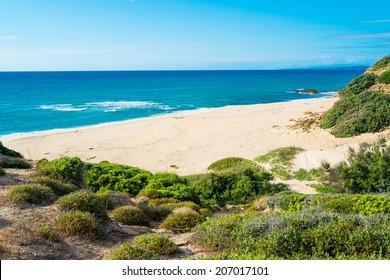 Scivu beach in green coast, Sardinia, West coast, Arbus, Italy