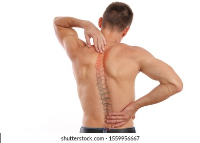 Scoliosis Spine Curve Anatomy, Posture Correction. Chiropractic treatment, Back pain relief.