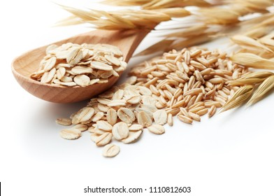 scoop and pile of oatmeal with its unprocessed grains and plant